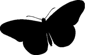 borboleta_preta